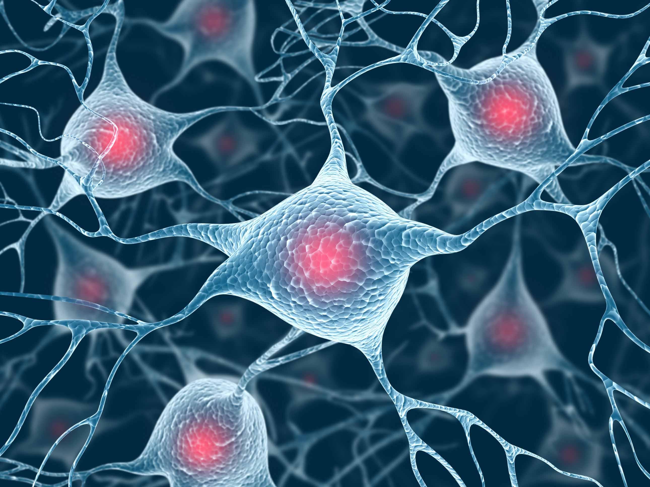 La meditazione ha effetto sui neuroni
