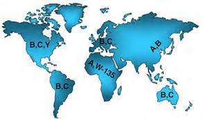 Ogni area geografica ha il suo tipo di meningococco